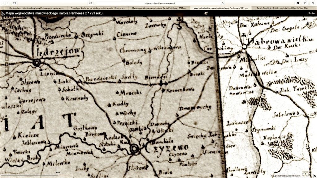 Mapa województwa mazowieckiego Karola Pertheesa z 1791 roku, Mapa Karola Pertheesa